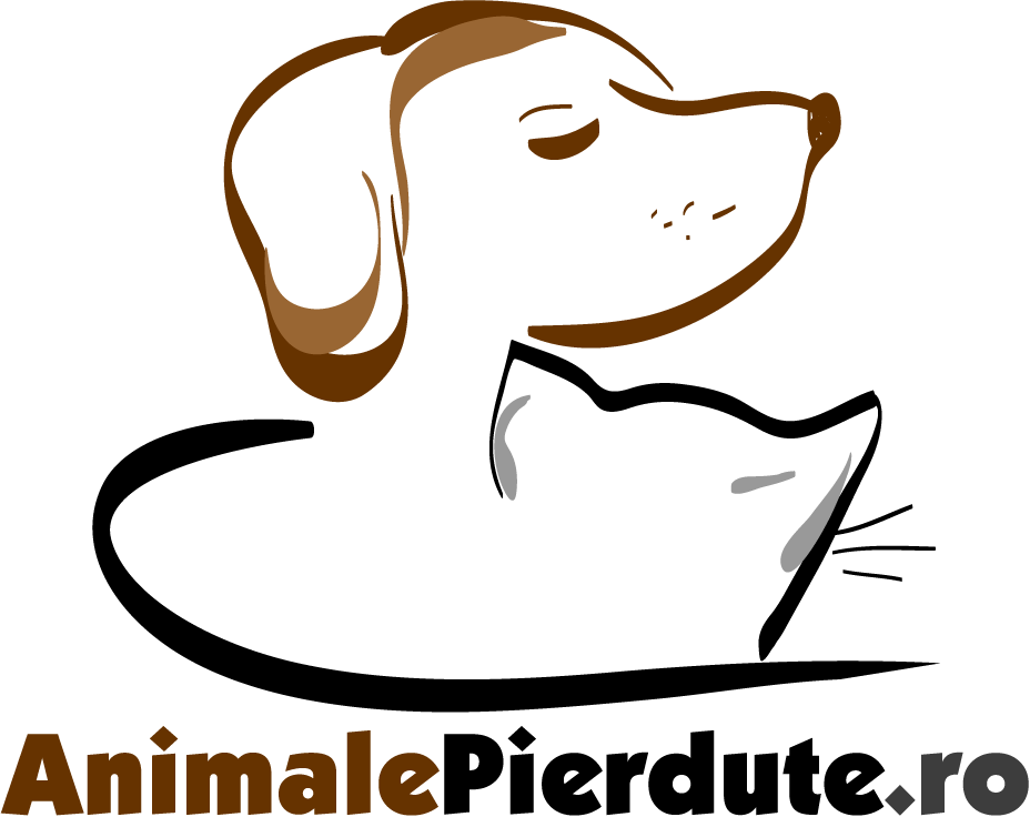 Animale Pierdute :: Locul de întâlnire al câinilor și pisicilor cu stăpânii lor