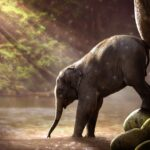 Totul despre ELEFANȚI: habitaclu, alimentație, media de viață, tipuri de elefanți și alte lucruri interesante